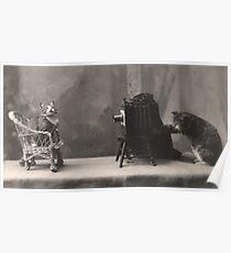 Kitten taking photos of kitten sitting on a cane chair Poster