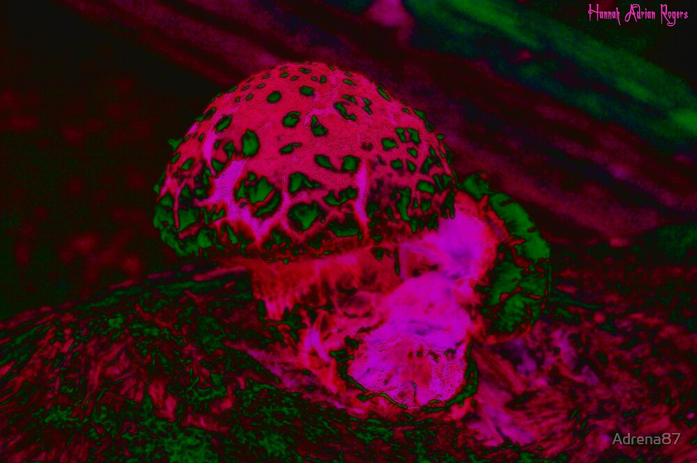 Psychedelic Shroom by Adrena87