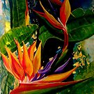 Strelitzia in Paradise by Ciska