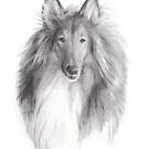 collie drawing by Mike Theuer