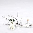 Winter Friends. by Rubyblossom