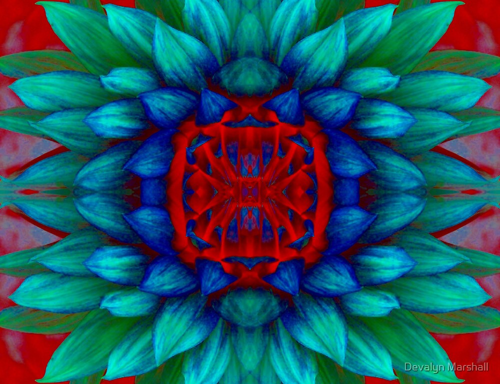 Square Flower Power by Devalyn Marshall