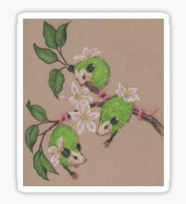 Green Apple Opossums Sticker