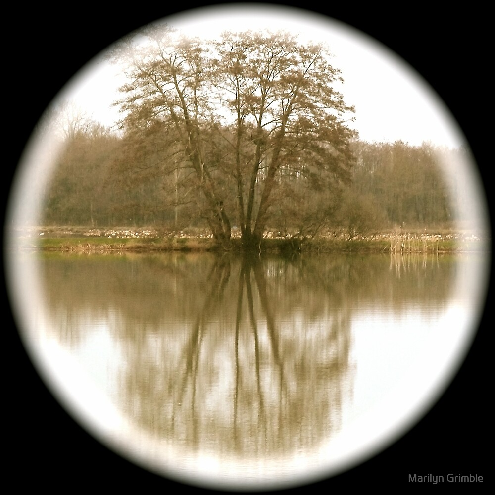 REFLECT  by Marilyn Grimble