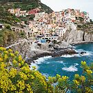 Daytime View of Manarola, Cinque Terre by Hotaik  Sung