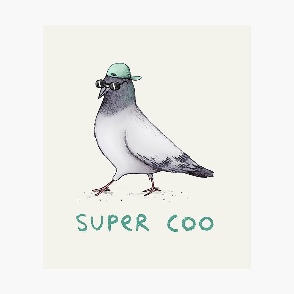 Super Coo Photographic Print