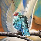 i'm like a bird by Sybil Alfano