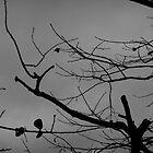 Sorrows  by Atraxura