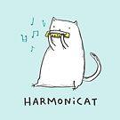 Harmonicat by Sophie Corrigan