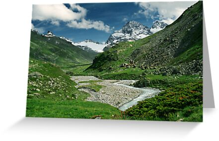 Early summer in Ochsental, Austria by Lenka