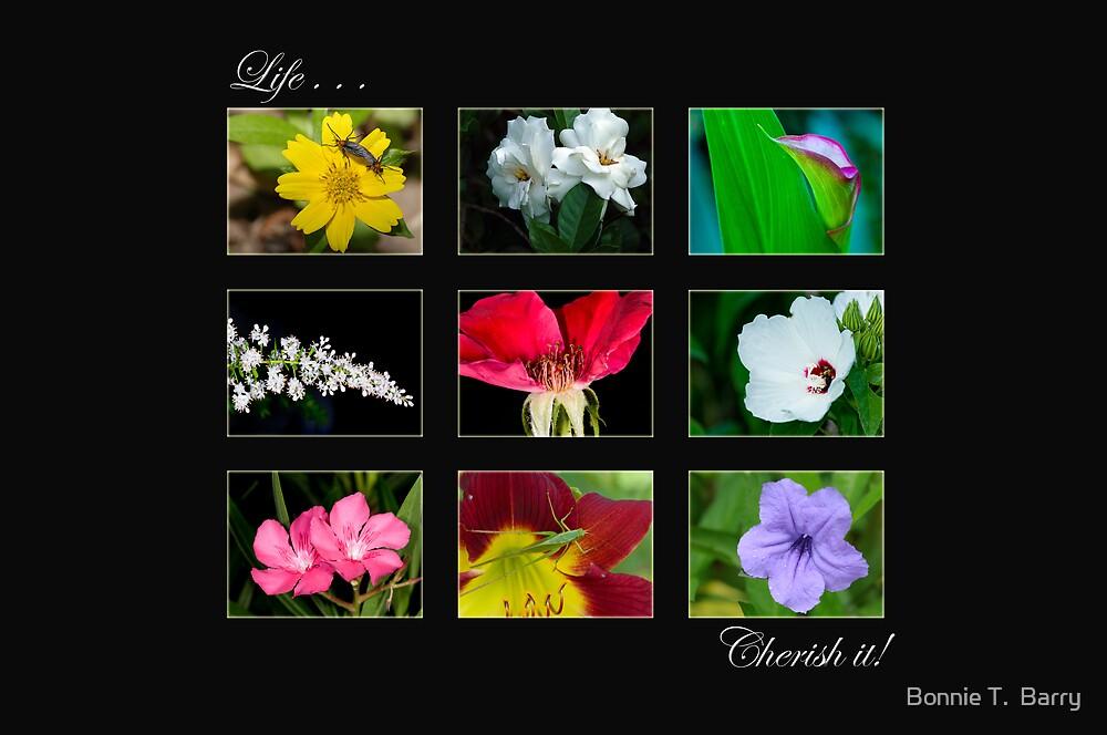 Life . . . Cherish it! by Bonnie T.  Barry
