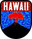 HAWAII PALMS SUN BEACH OCEAN SURFING WAIKIKI HILO VOLCANOES NATIONAL PARK HALEAKALA 2 by MyHandmadeSigns
