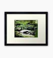 Muddy Creek Framed Print