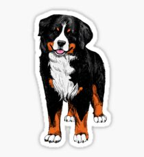 Berner Sennenhund  color sketch Sticker
