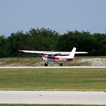 Prepare For Takeoff by iluvmyragdolls