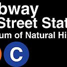 81st Street Subway Station–Museum of Natural History  by Rich Anderson