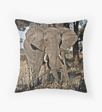 Scratching Post Throw Pillow