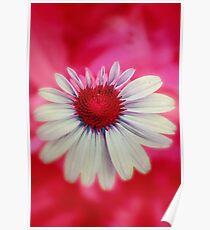 Neon Echinacea Red Poster