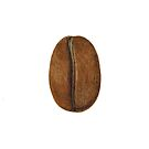 Coffee Bean by Lunta