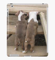 It's A Long Way Up iPad Case/Skin