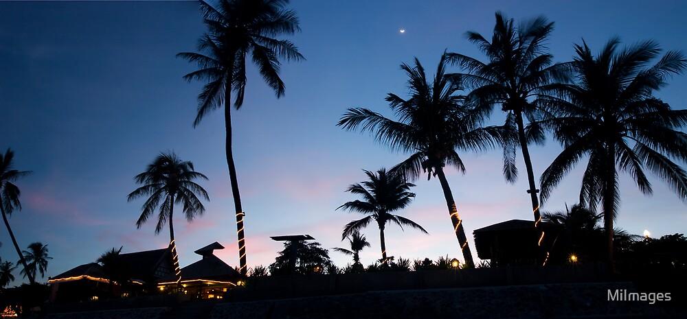 Ko Samui Tropical Sunset by MiImages