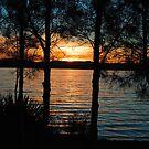 Sunset Glory - Warners Bay NSW Australia by Bev Woodman