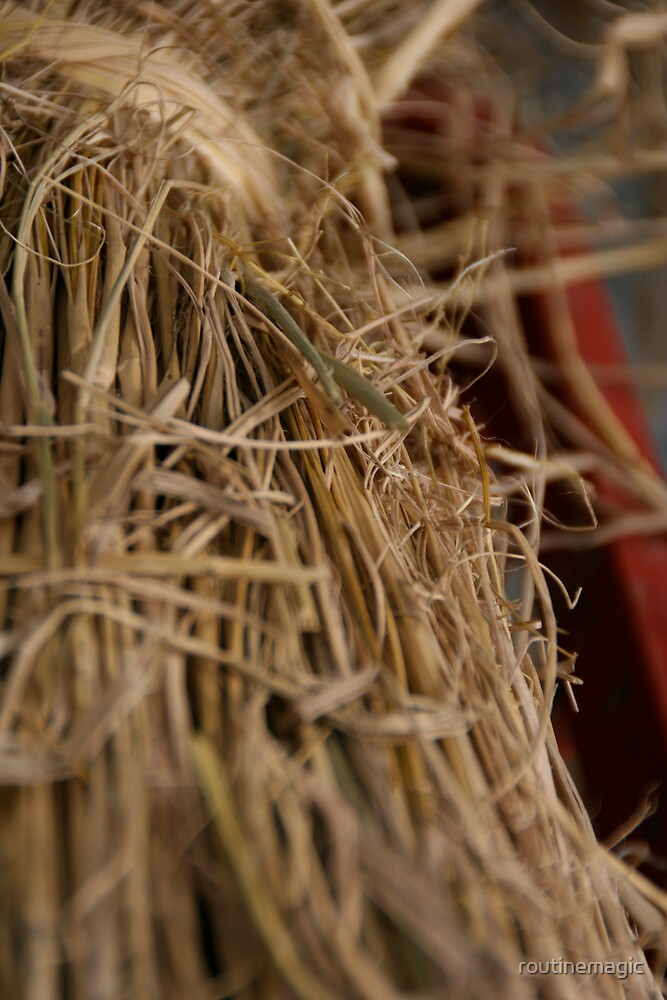 straw by routinemagic