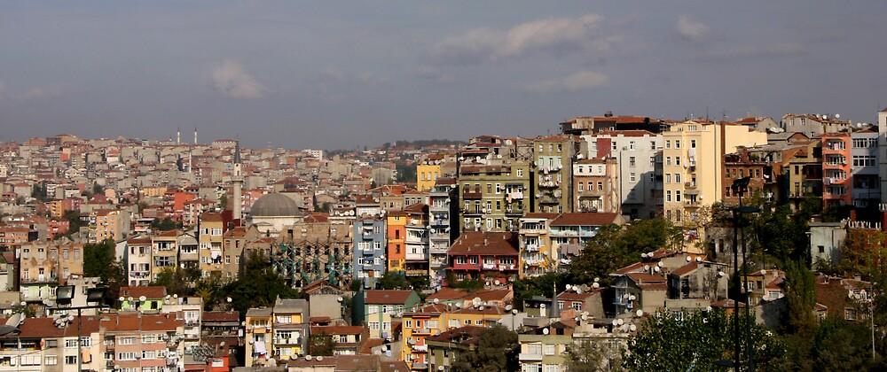 Istanbul by Faith Hunter