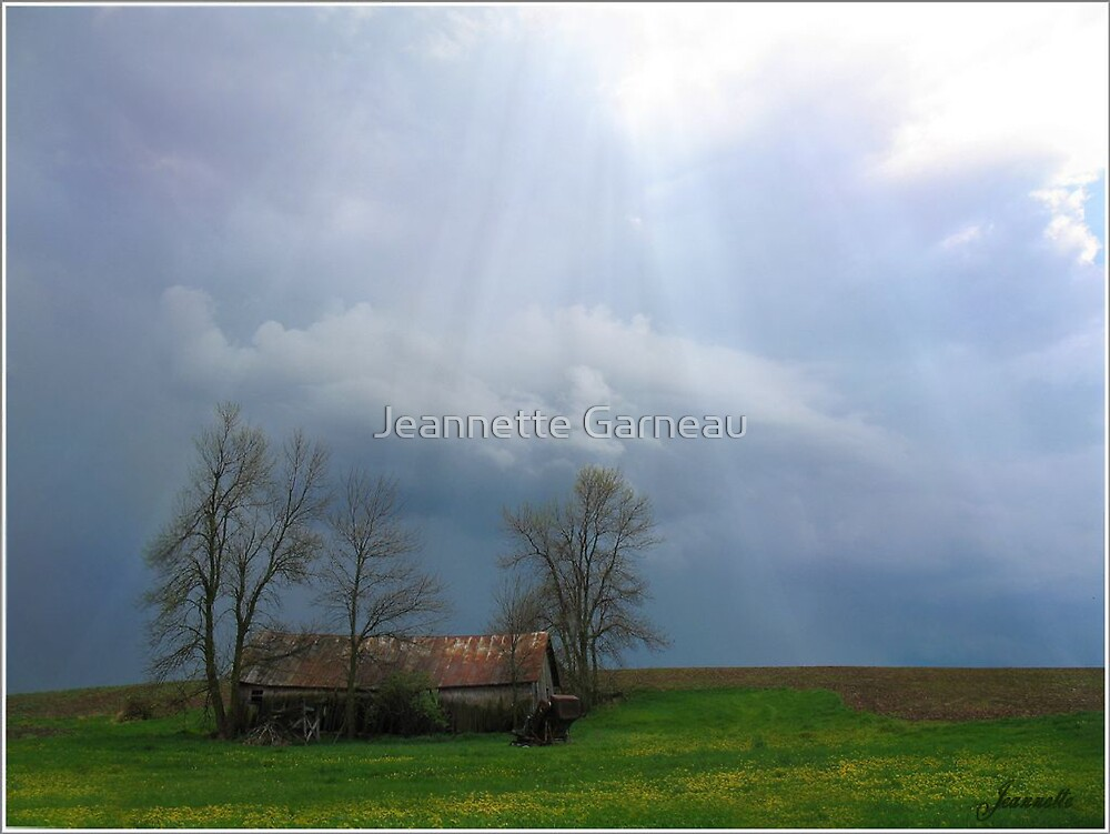 After The Storm by Jeannette Garneau