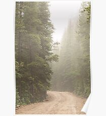 Dirt Road Challenge Into the Mist Poster