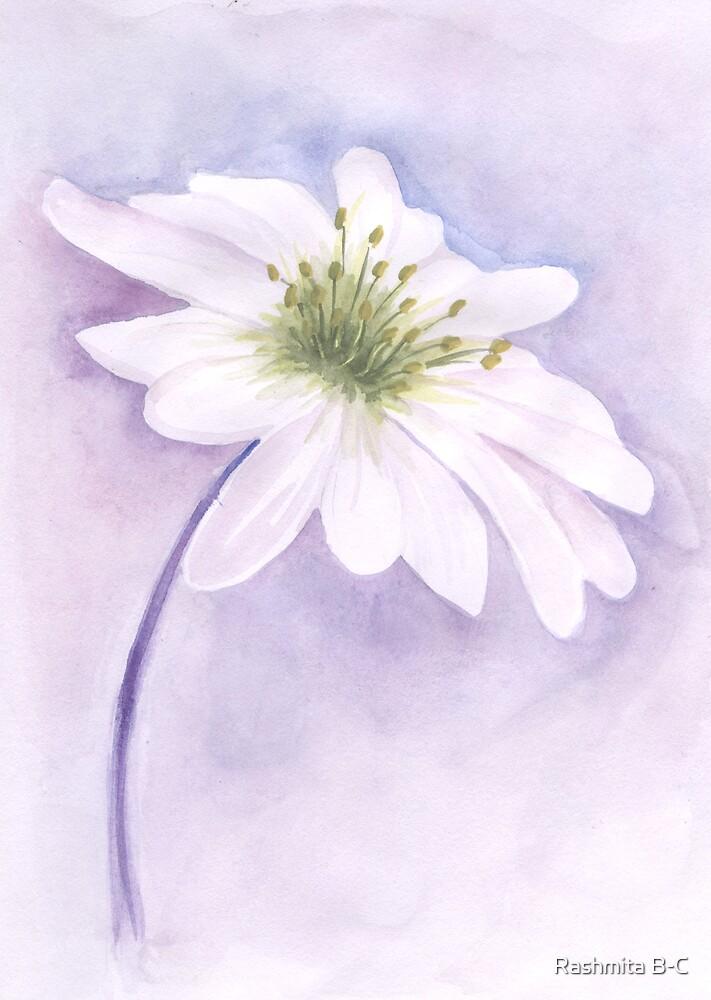 Lilac by Rashmita B-C