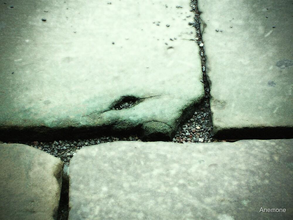 Stonework by Anemone