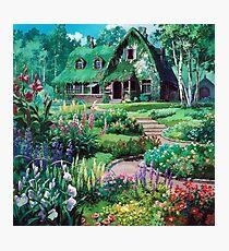 Miyazaki's Landscape  Photographic Print