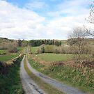 Scenic Irish country road by John Quinn