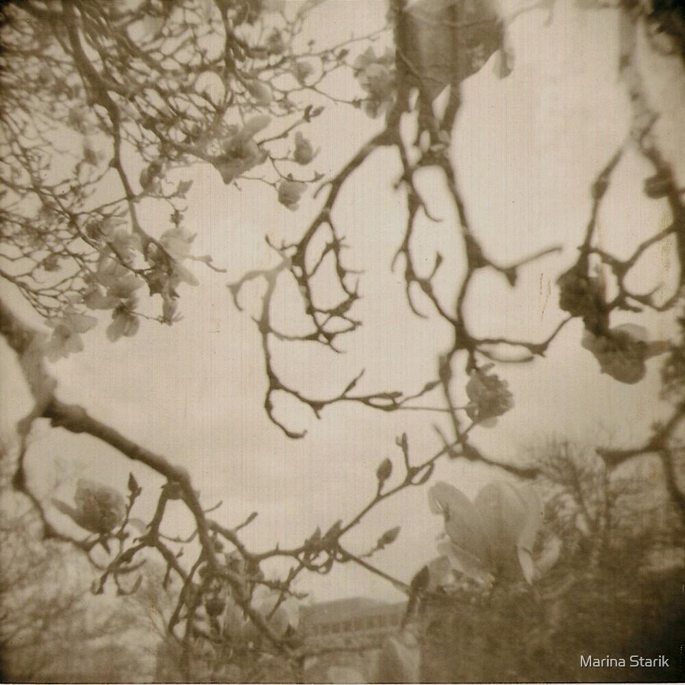 les fleurs du mal by Marina Starik