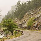Rainy Misty Boulder Creek and Boulder Canyon Drive by Bo Insogna