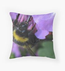 Sipping Nectar Through a Straw Throw Pillow
