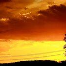 SKY FIRE by Alvin-San Whaley