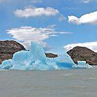 An Iceberg on Lago Grey by Graeme  Hyde