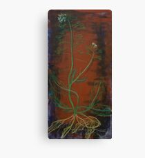 Giant Plant Life Exposed Canvas Print