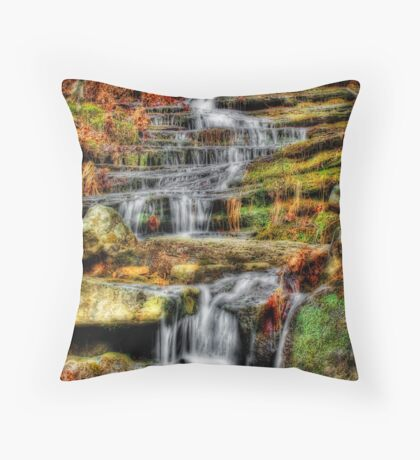 Swift Flow Throw Pillow