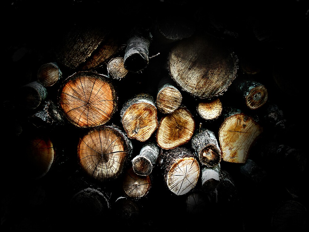 Firewood by webart