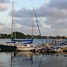 Sunset Marina by Rosie Brown