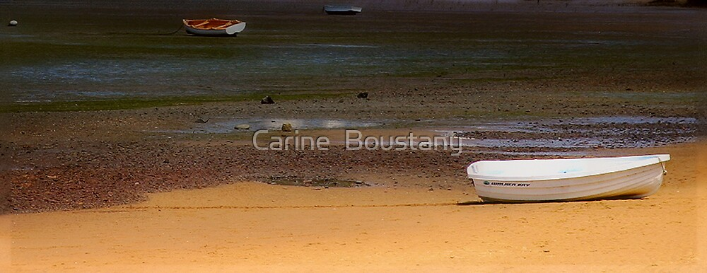 Beached  by Carine  Boustany