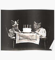 Kitten birthday Poster