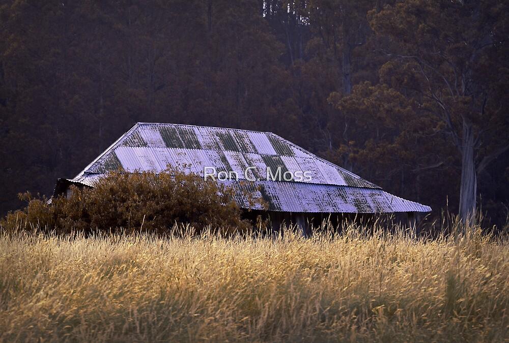 Farm House, near Judbury, Tasmania by Ron C. Moss