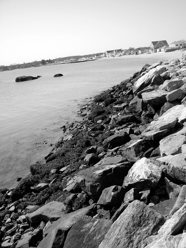 rocky waters by PaigeNora