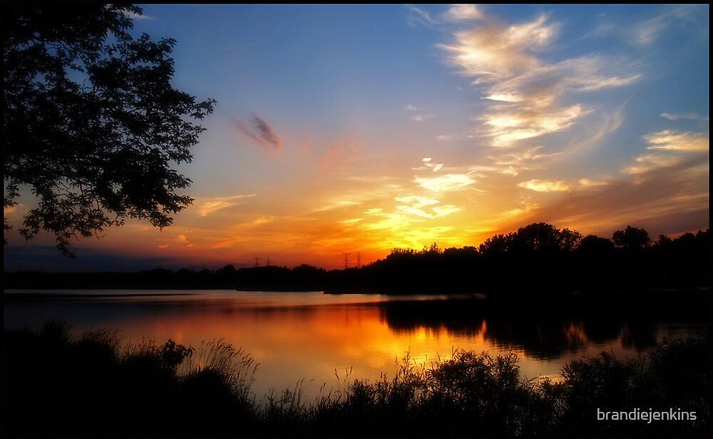 Twilight by brandiejenkins