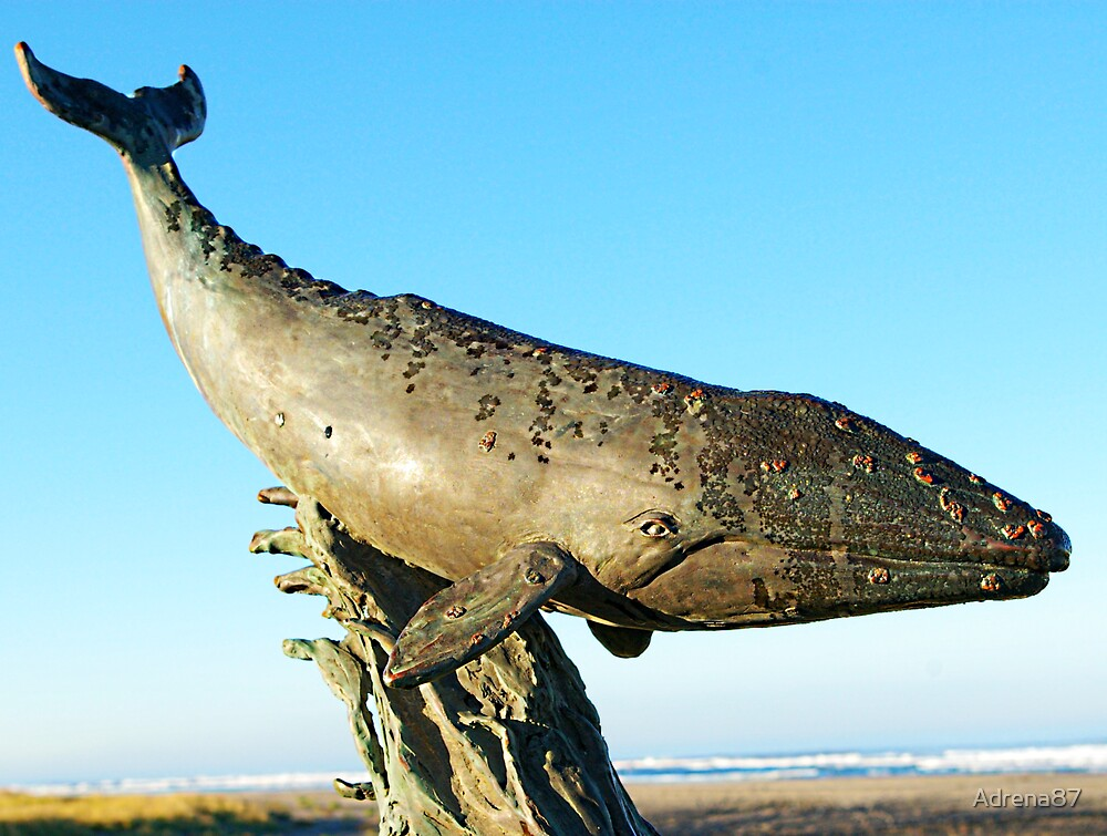 Gray Whale Bronze by Adrena87