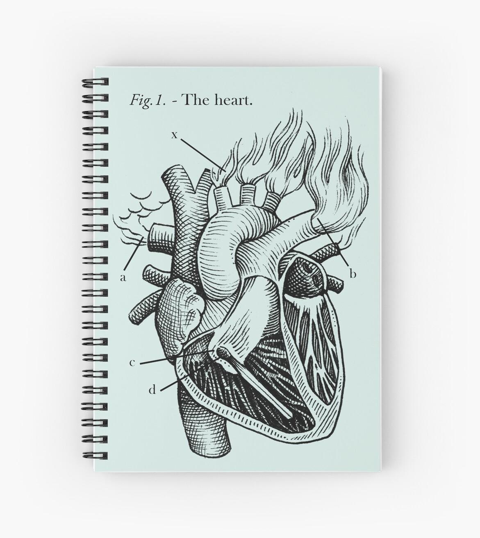 das Herz von Celeste Ciafarone